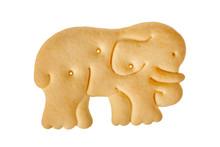 Cracker In Shape Of Elephant