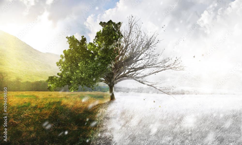 Fototapety, obrazy: Seasons - Winter/Sommer