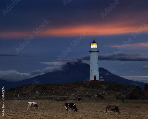 Photo Stands Lighthouse Cape Egmont Lighthouse, New Zealand