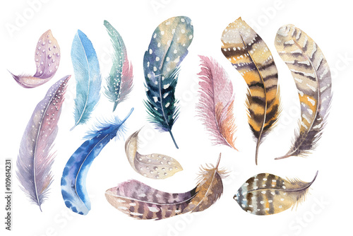 Hand drawn watercolor paintings vibrant feather set. Boho style Wallpaper Mural