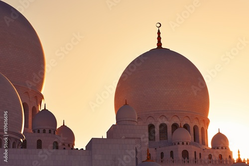 Fotografia  Mosque in Abu Dhabi