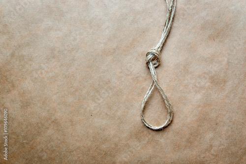 Fotografie, Obraz  concept hangman's knot on kraft paper background