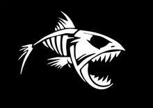Skeleton Of Fish