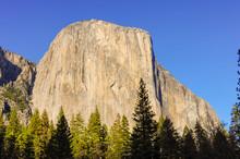 El Capitan, A Vertical Rock Fo...