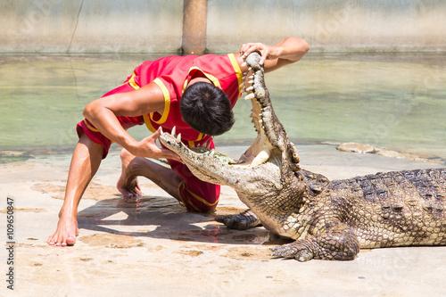 Recess Fitting Crocodile Lebensgefährlicher Versuch... Kopf im Krokodilmaul