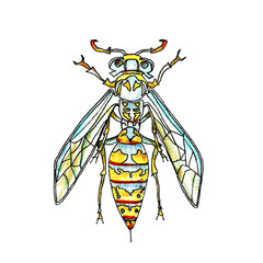 Plakat Watercolor illustration of a wasp