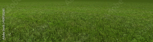 Recess Fitting Green grass 3d rendering