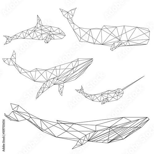 Fototapeta premium Zestaw geometryczny wieloryb