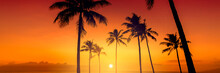 Tropical Island Sunset With Silhouette Of Palm Trees, Hot Summer Day Vacation Background