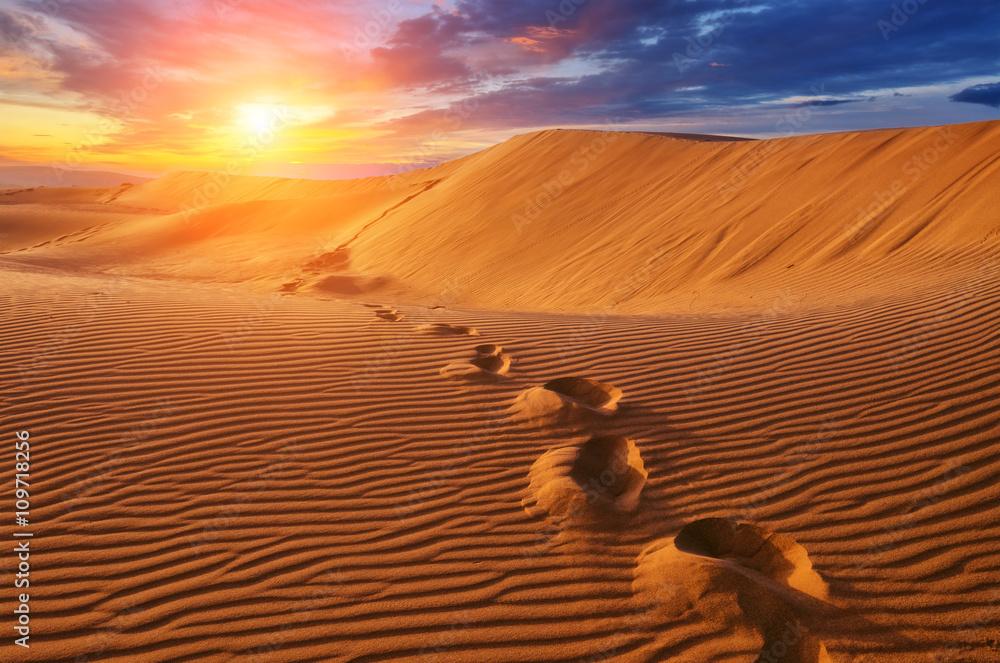 Fototapety, obrazy: Pustynia o zachodzie słońca
