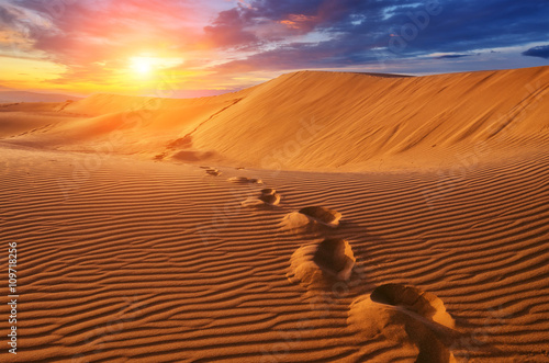 Canvas Prints Desert desert