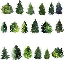 Set Of Trees Drawing By Waterc...