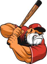 Ferocious Bulldog Baseball
