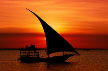 Fishermen Dhow Boat Coming Back Home At Sunset From A Long Day In The Sea.