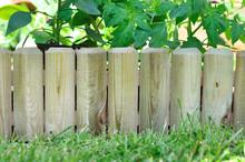 Bordure Bois Dans Potager
