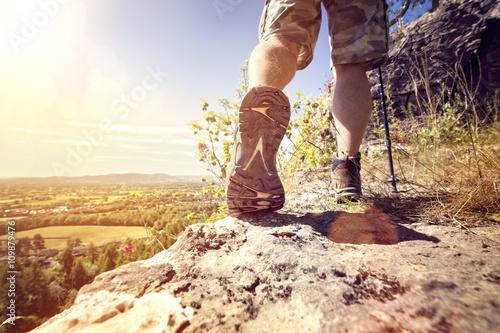 Fotografie, Obraz  Hiking on a mountain trail