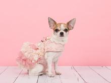 Wearing A Pink Dress