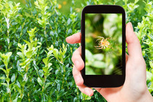 Farmer Photographs Spider On Web On Boxtree
