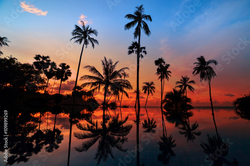 Poster Palmier Tall coconut palm trees at twilight sky reflected in water