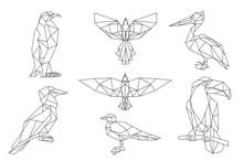 Bird Triangular Icon Set.