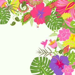 Tropical summery background