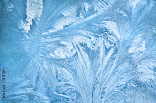 Fotomural Abstract frost