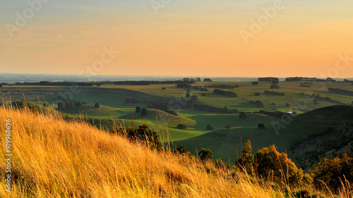 In de dag Heuvel Australia Landscape : Melbourne countryside