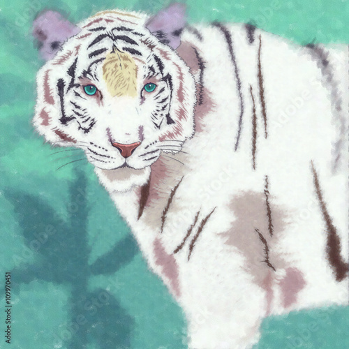 Wild Cats. White Tiger - 109970451