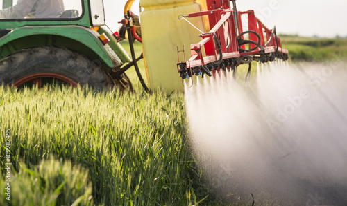 Tractor spraying wheat field Wallpaper Mural