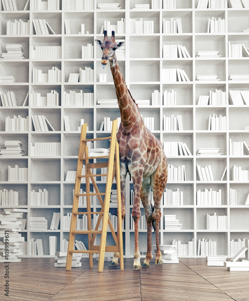 giraffe  in the library
