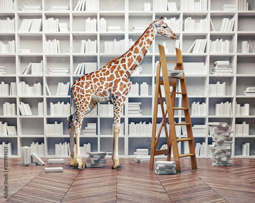 Tuinposter Giraffe giraffe baby in the library