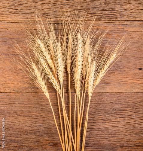 Foto op Canvas Paardebloemen en water Barley grain on wooden table