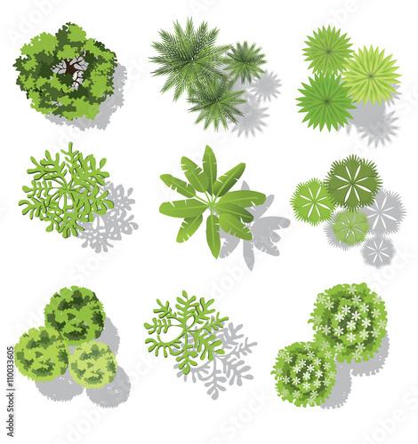 Set Of Treetop Symbols For Architectural Or Landscape Design For