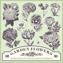 Vintage Floral Design Elements...