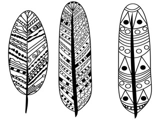feather coloring vector for adults
