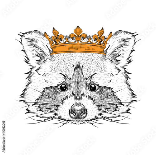 Photo Stands Hand drawn Sketch of animals Hand draw Image Portrait raccoon in the crown. Use for print, posters, t-shirts. Hand draw vector illustration