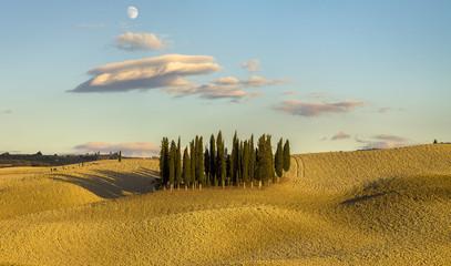 Fototapetajesień na polach Toskanii