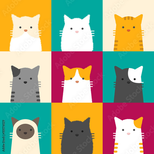 Fotografie, Obraz  cat portrait