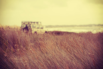 Beach landscape and retro car freedom concept