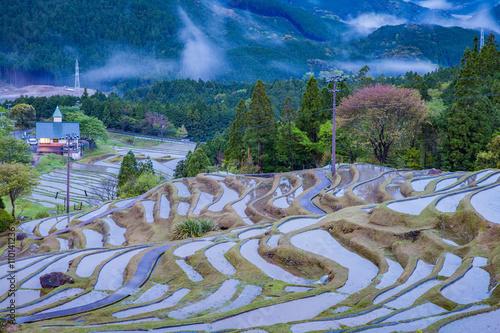 Foto auf Gartenposter Reisfelder Terraced rice field at Maruyama Senmaida , Kumano City, Mie Prefecture , Japan