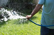 Gardener Watering Garden From ...