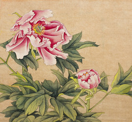 Fototapeta Orientalny peony painted in Chinese style