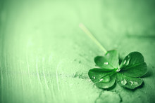St. Patricks Day,  Clover Leaf On Green Wooden Background