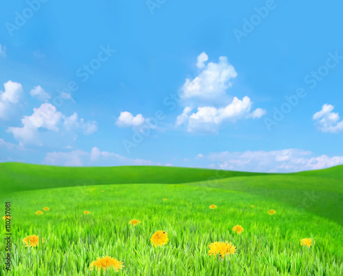 Poster Lime groen Beautiful summer landscape with green hills and blue sky