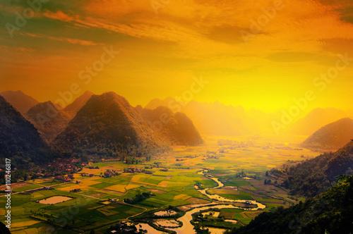 Foto  Rice fields in sunset on mountain in Vietnam.