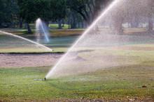 Sprinkler Watering In Golf Course