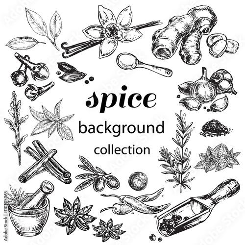 Fotografía  spice collection