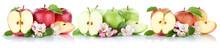 Apfel Frucht Äpfel Früchte Obst Hälfte Geschnitten In Einer R
