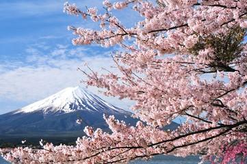 Panel Szklany Podświetlane富士山と桜