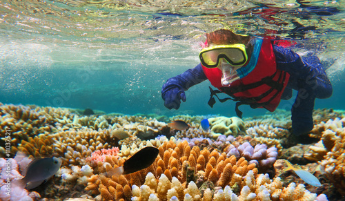 fototapeta na ścianę Child snorkeling in Great Barrier Reef Queensland Australia